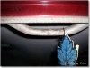 Details By Mark  - Portland's Best Auto Detailing and Restoration. Mold & Mildew Removal
